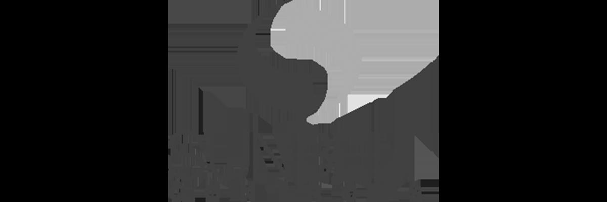 sunbelt-controls-logo-grey